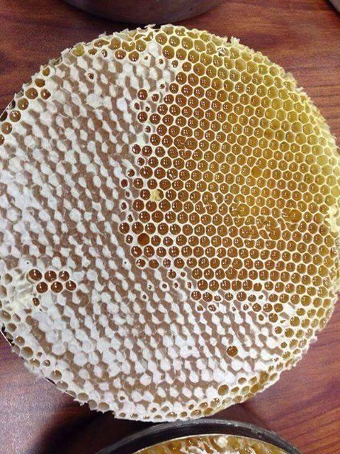 الطريقة-الصحيحة-في-استعمال-العسل-للتداوي