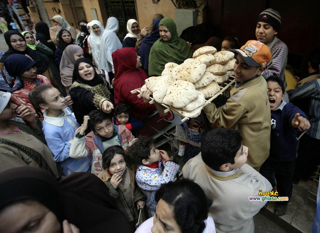 الزيادة السكانية والمشكلة السكانية في مصر