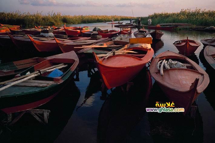 معلومات-عن-بحيرة-ادكو