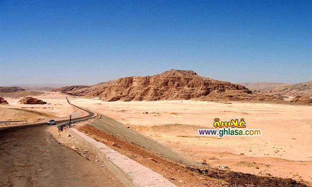جهود-الدولة-فى-تعمير-صحراء-سيناء