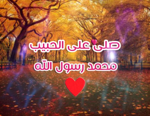 ومواعظ 18 - حكم ومواعظ صور مكتوب عليها حكمة جديدة