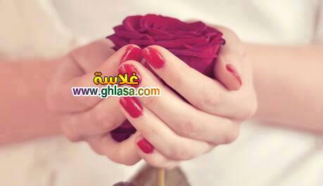 شبكة غلاسة 13 - صور رومانسية روعة happy valentine day