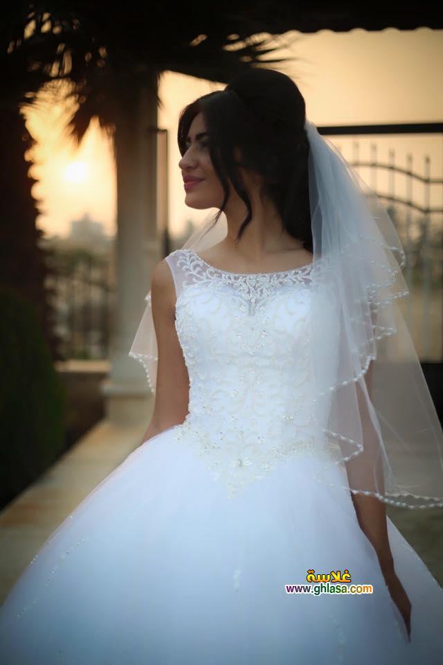 صور فستان الفرح