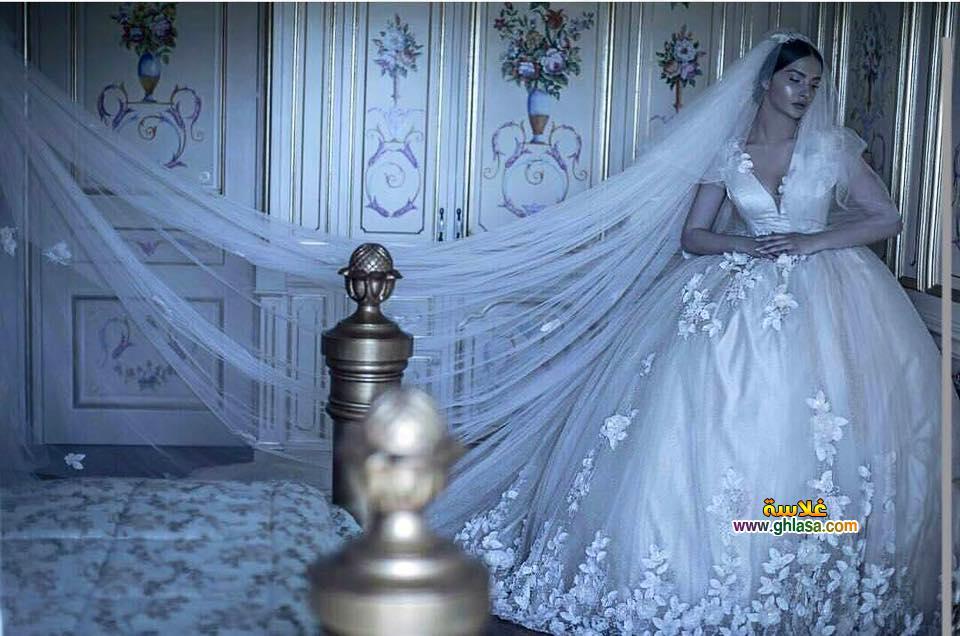 الزفاف شبكة غلاسة 27 - اجمل فساتين زفاف صور فستان الفرح 2018