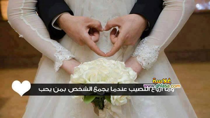 فساتين زفاف جميلة 2019