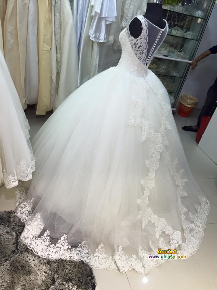 احلى صور فستان زفاف
