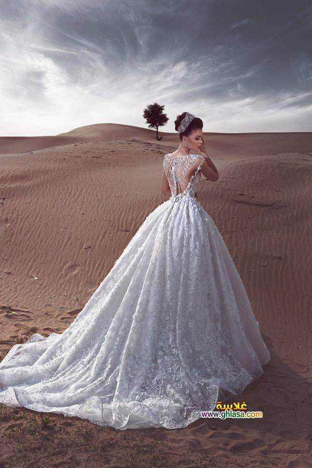 صور فستان فرح روعة