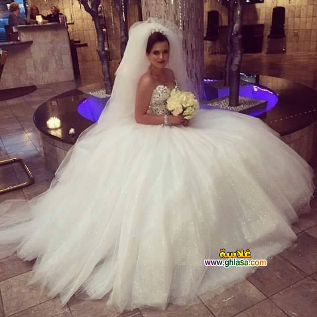 احلى صور لفساتين زفاف