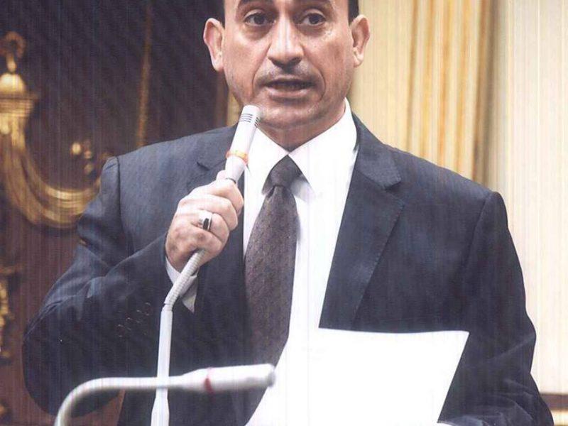 نائب مدينة ادكو محمد عبدالله زين الدين ينظم  مؤتمر حاشد لدعم السيسي